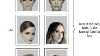 Testovací šablona tváří